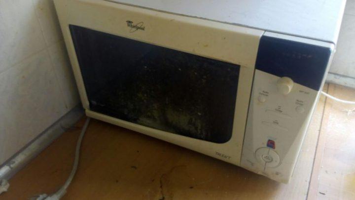Уборка в квартире — мойка микроволновки